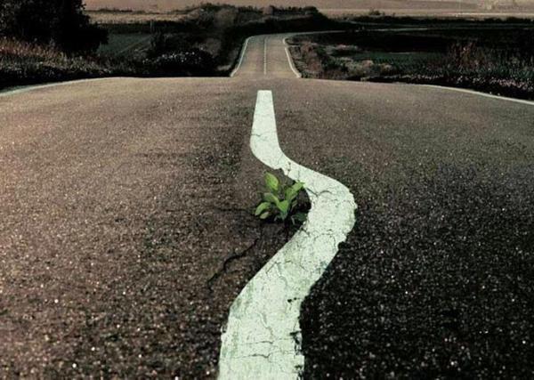 Tu dois te battre pour atteindre tes rêves. Tu dois faire des sacrifices et surtout travailler très dur pour cela..!