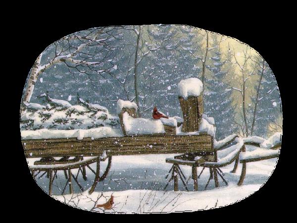 toile d hiver