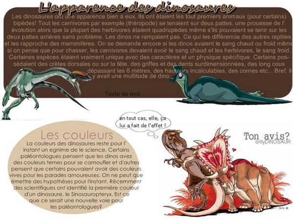 les différentes formes des dinosaures ♥