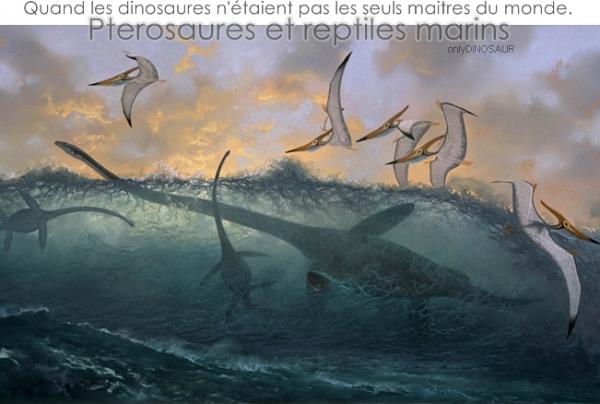 Qui peuplaient les mers et les cieux aux temps des dinosaures? surement pas les dinosaures!