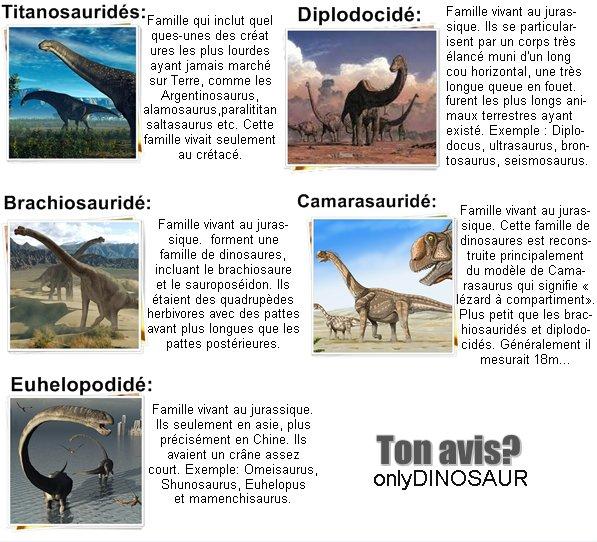 sauropodae