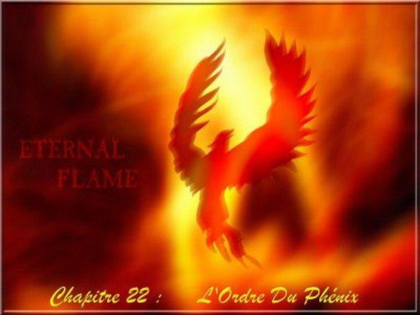Chapitre 22 : L'ordre du Phénix