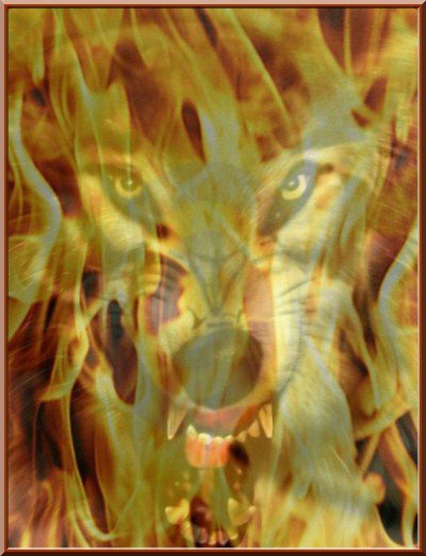 Chapitre 35 : La puissance de la haine