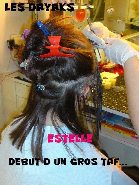 ESTELLE /