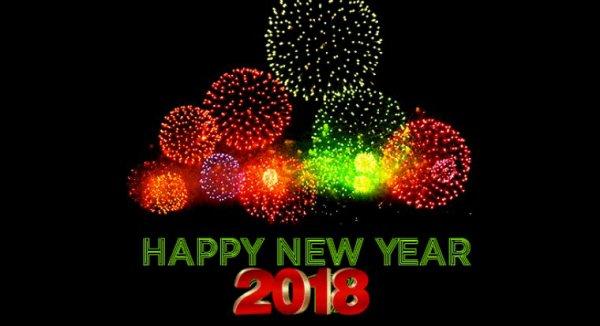 Bonne année à vous tous : )