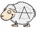 Photo de Sheep-Anarchiste