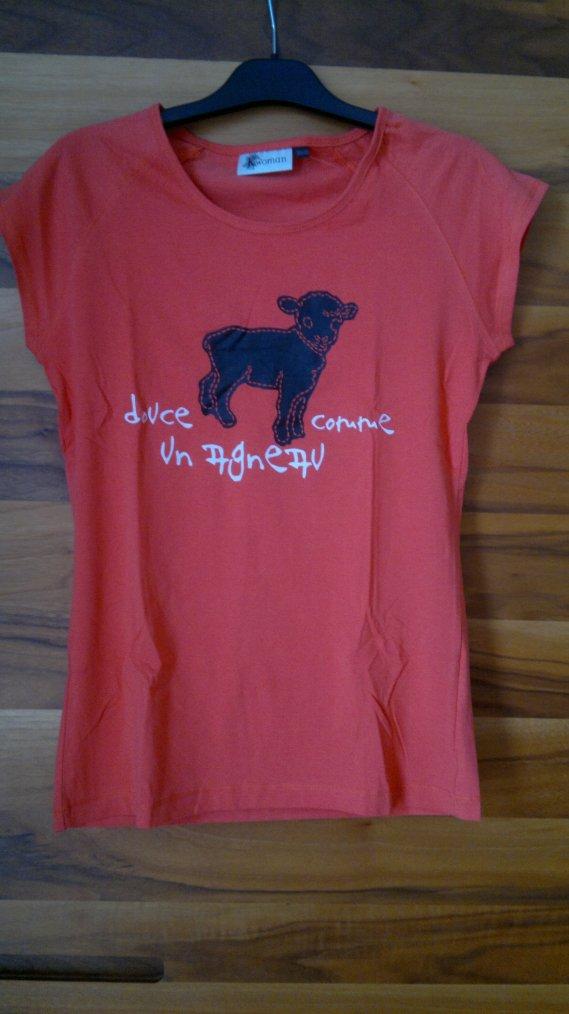lot de 2 t-shirt kiabi neuf 38/40 - Prix : 10 ¤