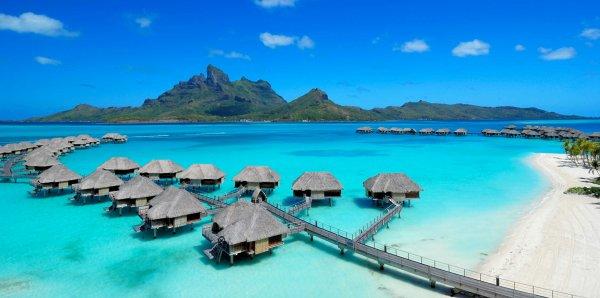 Grosse année de voyages New-york puis 3 semaines en guadeloupe puis 1 semaine de surf puis 3 semaines...à choisir, Mexique, Tahiti...hum humm