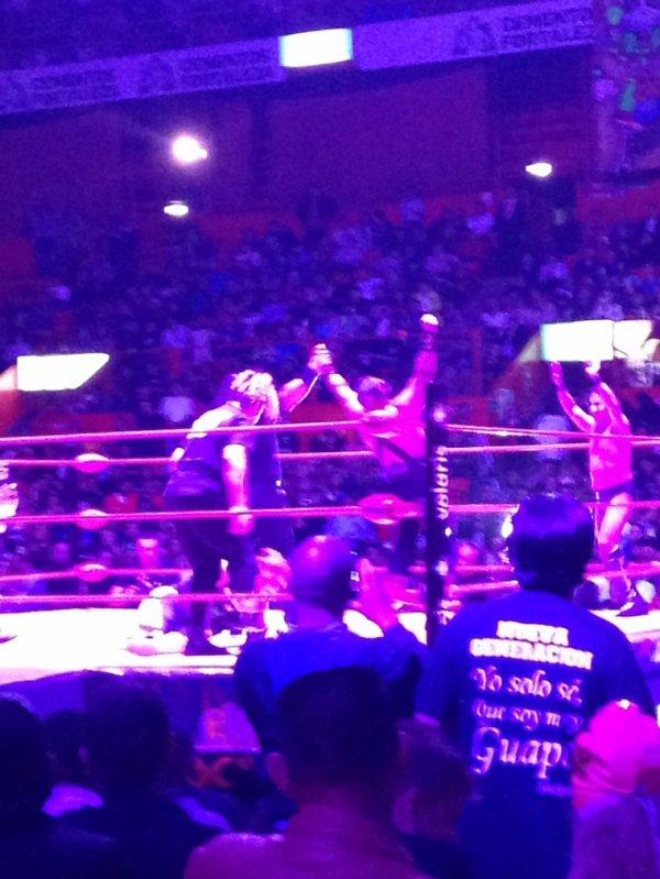 Lucha mexicaine