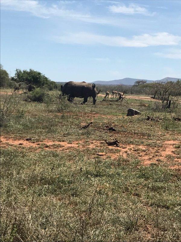 Afrique du sud: Kwazulu natal