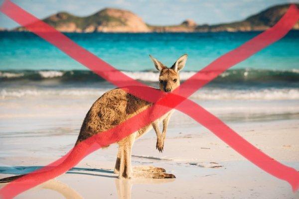 J'annule mon voyage de 3 semaines en Australie. Je devais partir samedi prochain. Je perds mon billet d'avion ☹️