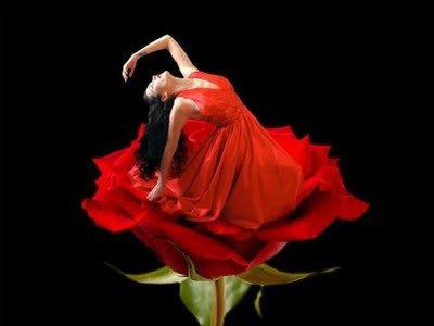La Femme : une beauté offerte ... Gare au prix à payer...