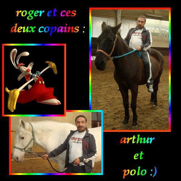 vive le cheval :) ne po rire de moi svp lol :)