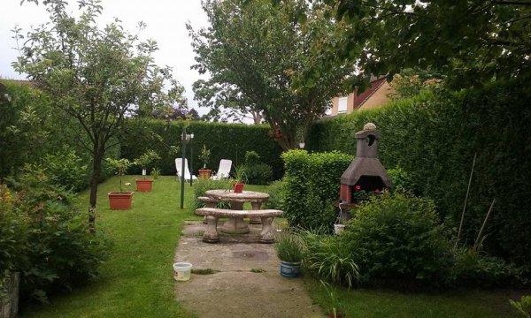 Mon jardin le 11 Juin 2016