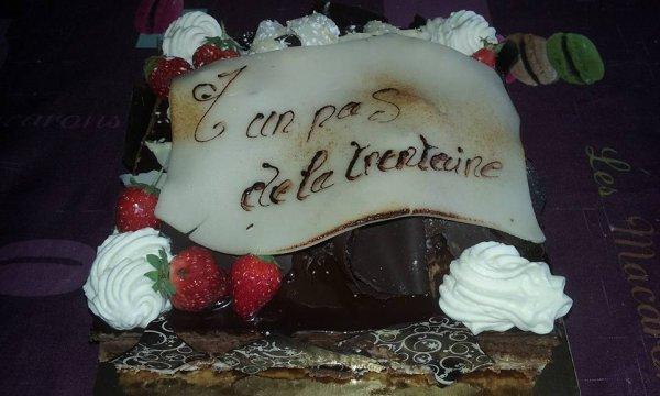 Gâteaux D'anniversaire de mes jumeaux Angelina & Gino 28 ans