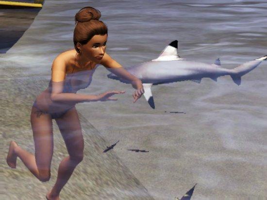M1 - Manger les dents de la mer