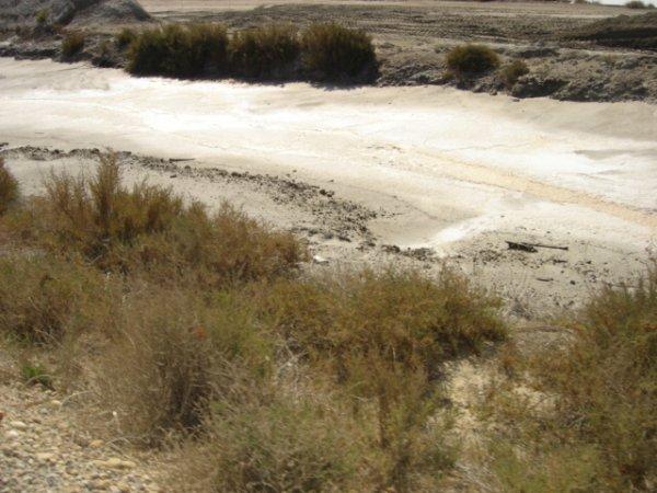La fleur de sel se forme principalement pendant les nuits d'été lorsque l'écart de température entre l'air tiède et la surface du marais salants est suffisant. Elle est rabattue par le vent sur les bords du bassin.