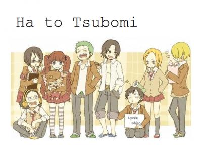 Ha to Tsubomi