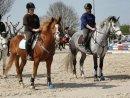 Photo de Iron-a-Horse