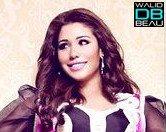 Album Tayr El Hob / ╚►Nahawel Nensa 2♥11 نحاول ننسى (2011)
