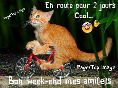 Très bon Week-end à tous ! !