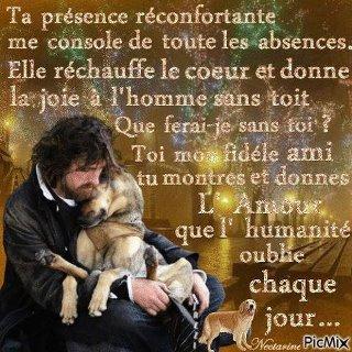 Une pensée pour nos amis les animaux , DITE NON A L ABANDON ET LA VIOLENCE ! !