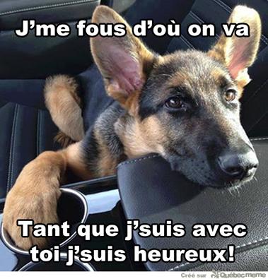 ET TOUJOURS DES BELLES CITATIONS ,DE LA TENDRESSE ET DE L HUMOUR ! ! ! ! ! ! !