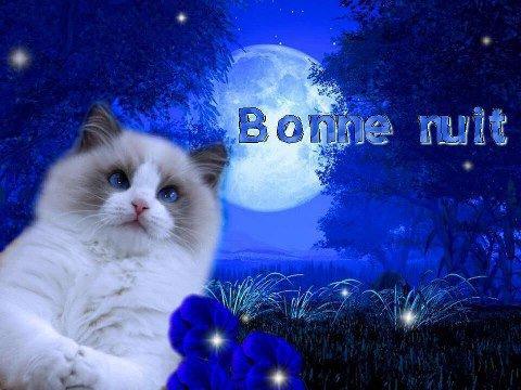 BONJOUR  ...je vous souhaite une très bonne journée ! !