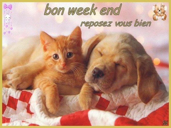 Je souhaite un très bon Weekend à tous les visiteurs...