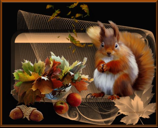 Merci à mes amies pour leurs jolis cadeaux....Valouna..amourdetoi.. veradu13 .scarlettedusud...Itounany... Kdoinsomnie..orchideerose..scarlettedusud