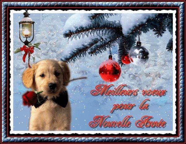 Je vous souhaite une Joyeux Noël et une Bonne et Heureuse Année......et Merci à mesloulous1959 pour ces 4 jolis montages