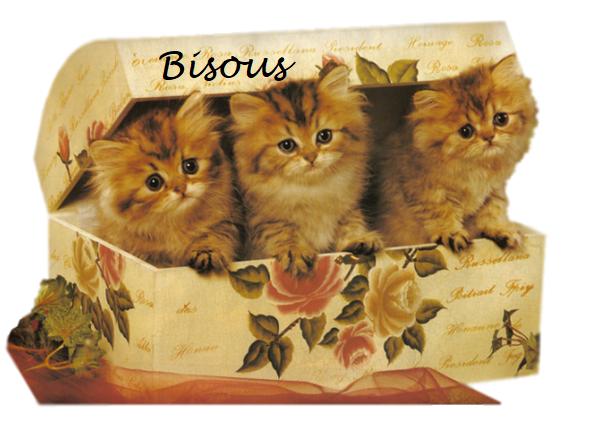 Merci au blog.. abigaelle et petitemamiedu13  et Blanche628  pour ces jolis cadeaux