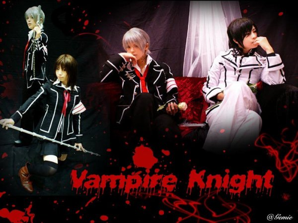 Cosplay Vampire Knight  groupe ^^