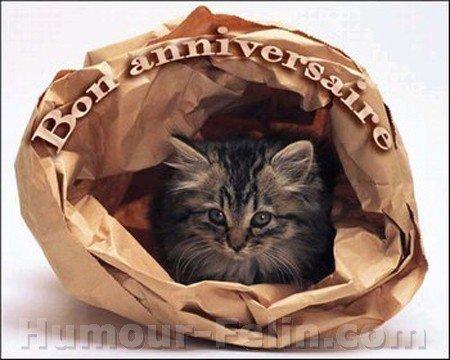 joyeux anniversaire  a ceux qui on anniversaire aujour d hui