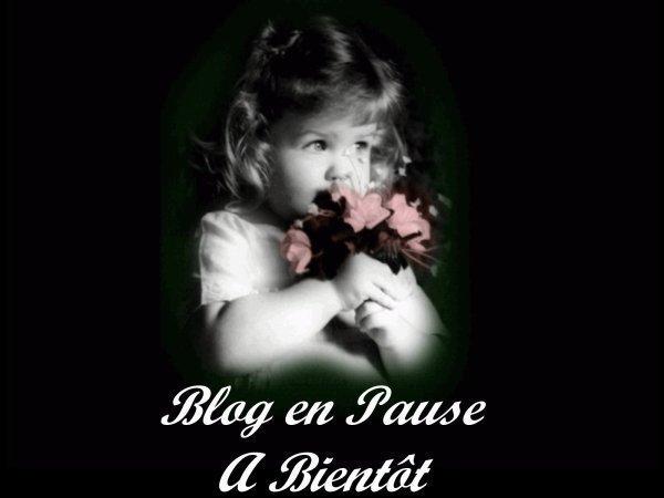 blog  en  pause  bebe  arrive
