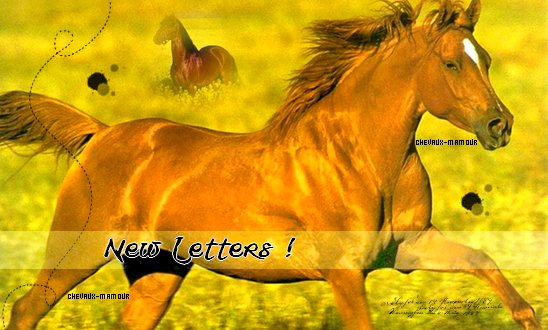 News Letters !