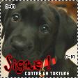 Ici , je metterais des pétition contre les cruautés des hommes envers les animaux...