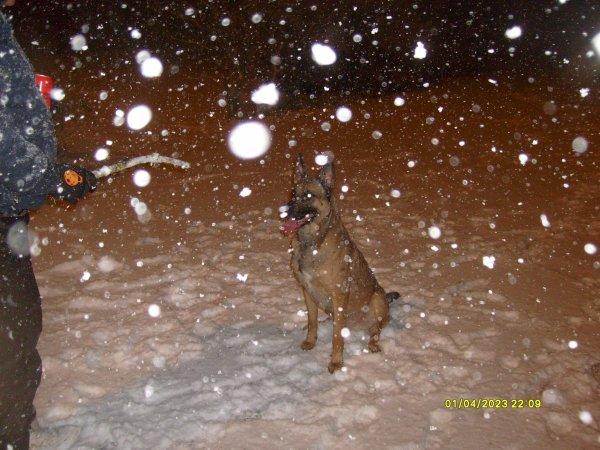 la neige de janvier 2013