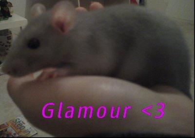 Ma rat !! <3