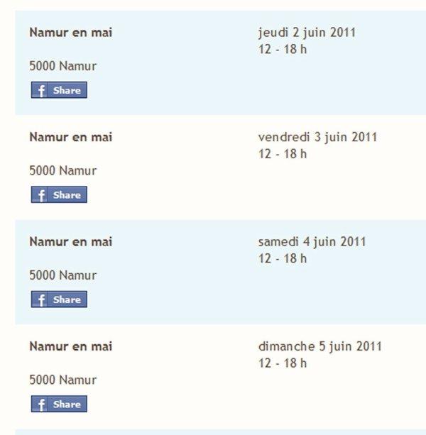 """Dégustation de glace """"Fermette"""" a Namur"""