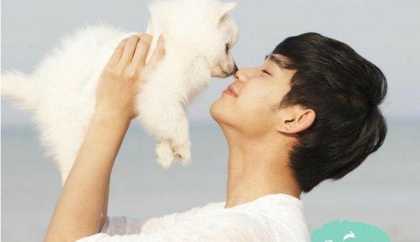 kpop kawaii avec animaux cute