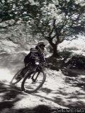 Photo de dsb-crew-rider