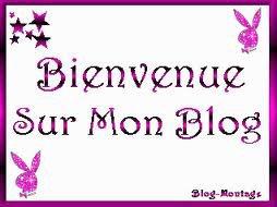 Bienvenu Sur Le Blog De x3--Amouur--x3
