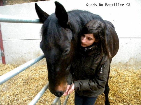 Un cheval vous fera souffrir qu'une seule fois, le jour ou vous devrez le laisser partir..