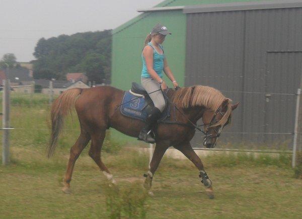 L'équitation : La meilleure des drogues !! <3