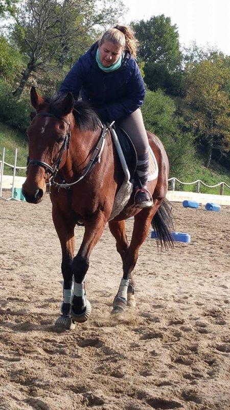 L'équitation est le seul sport individuel qui se pratique à deux..  ღ