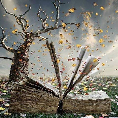 Une histoire , un livre