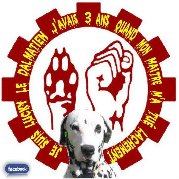 Les Groupes de Lucky sur facebook