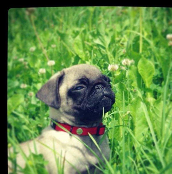 Mon Bébé D'Amoour ! ♥