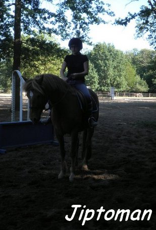 L'équitation ; Bien plus qu'une passion ♥